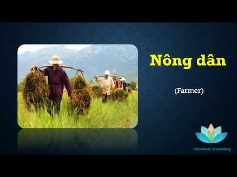 Learning vietnamese vocabulary: JOB Topic