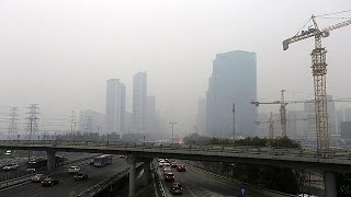 Paris İklim Zirvesi'nde yeşil ekonomi modeli aranıyor