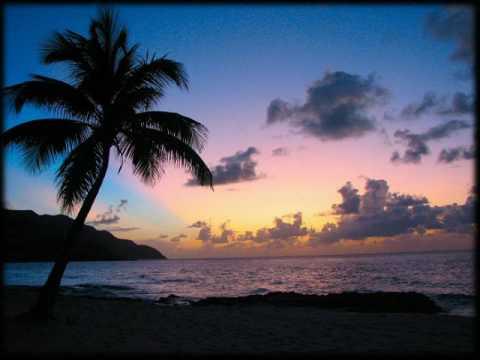 Clear Conscience - Island Feeling