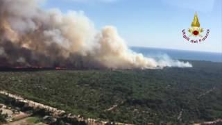 Wildfire Burns in Castel Fusano Park Outside Rome