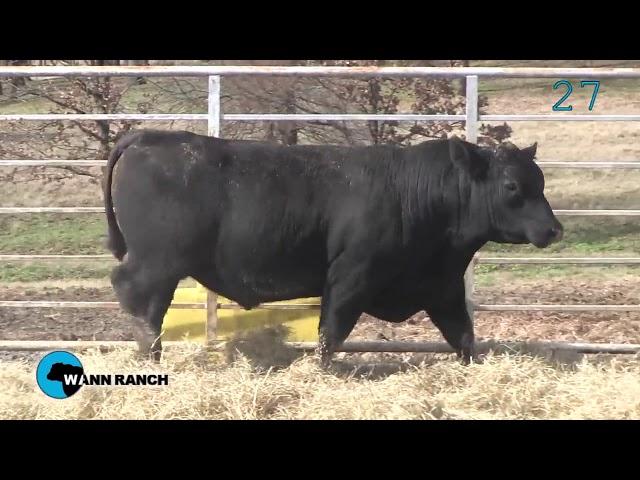 Wann Ranch Lot 27