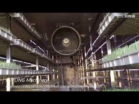 Baixar Emely Liu - Download Emely Liu | DL Músicas