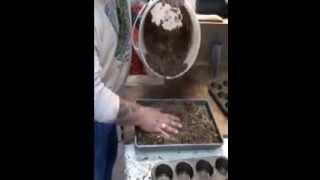 Easy Sawdust Fire Starter Bricks