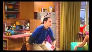 The Big Bang Theory - Schrodinger