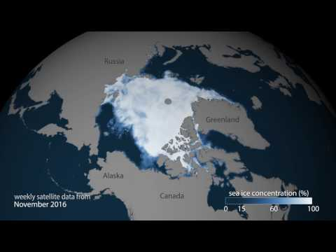 February 2017 Arctic Sea Ice Update