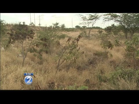 Chinese company ready to begin development plans for Kapolei West