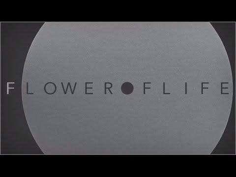 """▲THE NOVEMBERS  """"Flower of life""""  MV▲"""