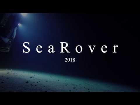 Rare shark nursery discovered - SeaRover 2018