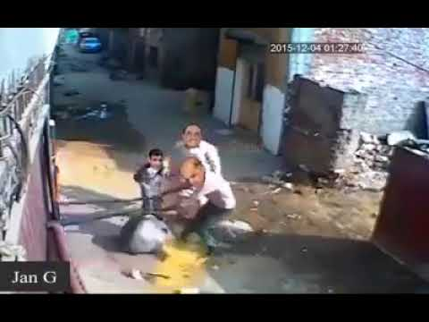 Nawaz Sharif and Shahbaz Sharif Funny Video
