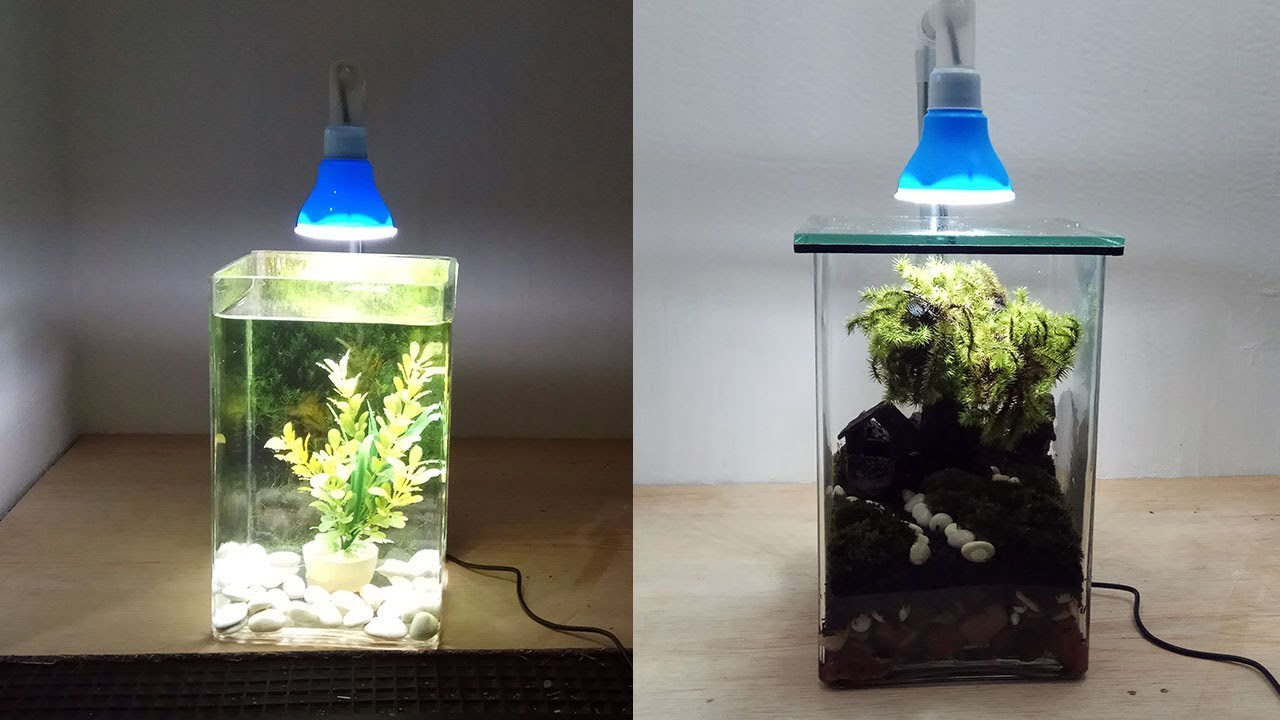 Lampu Led 5 Volt Dibikin Lampu Aquarium Link Sukses Membuat lampu aquarium sendiri