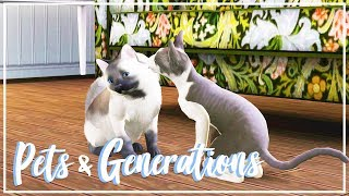 Let's Play: The Sims 3 Pets & Generations (Part 9) - KITTENS?!