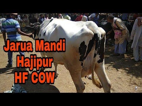 Jarua Mandi (part1)Hajipur Patna Bihar 18 March 2018