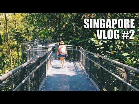 Southern Ridges - Henderson Waves Bridge - Forest Walk   Singapore Vlog #2