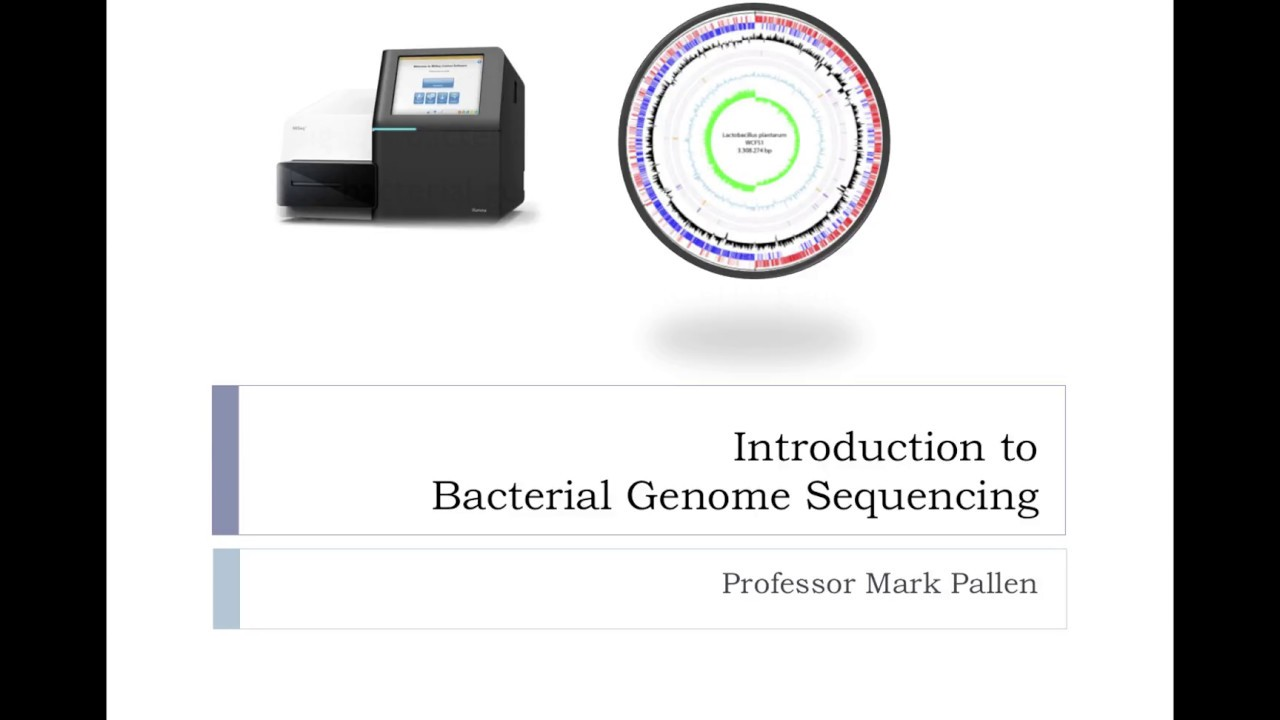 Introduction to bacterial genome sequencing - YouTube  Introduction to...