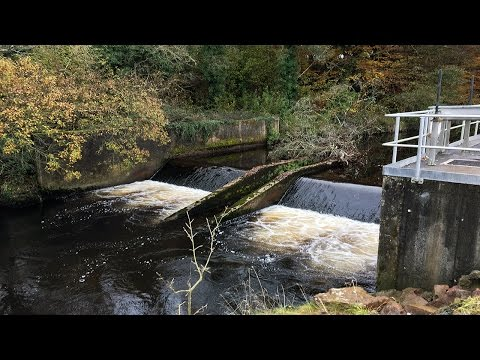 Blocked fish pass at Newport Water Abstraction, Co Tipperary