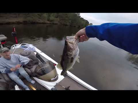 Lake Welsh Texas Bass Action