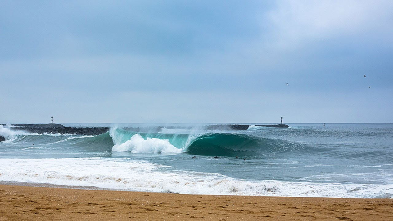 surfline live replay the wedge youtube