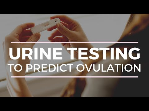 urine-ovulation-tests-(opk's)-everything-you-need-to-know!