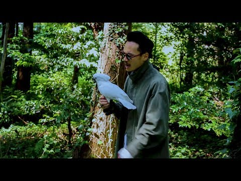 BASICA - 雷魚 (Music Video)