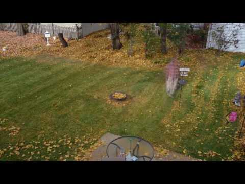 mulching leaves with a mower do not rake your leaves doovi