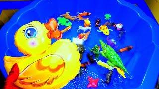 Обучающее видео для детей | Изучаем названия животных | Развивающее видео | Игрушки в воду