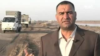 8322 طير شارك في سباق الحمام الزاجل في العراق