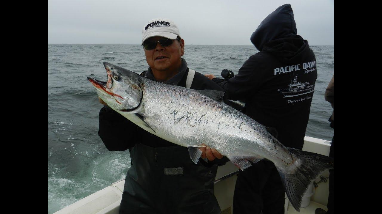 Mooch Better Fishing - Sport Fishing Charter Boat