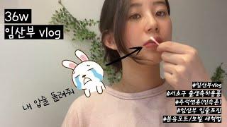[Vlog] 36w 임산부일상 | 독감인플루엔자 | 임…