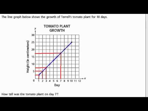 line graph tomato plant growth - YouTube