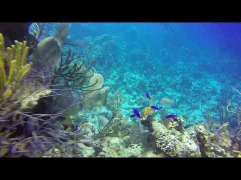 Diving Grand Turk - Hero 4 Black - Feb 2015
