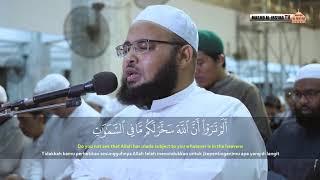 Bacaan Merdu Surat Luqman - Syekh Ali Sholeh Al-Makky