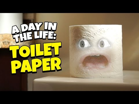 A Day in the Life of Toilet Paper