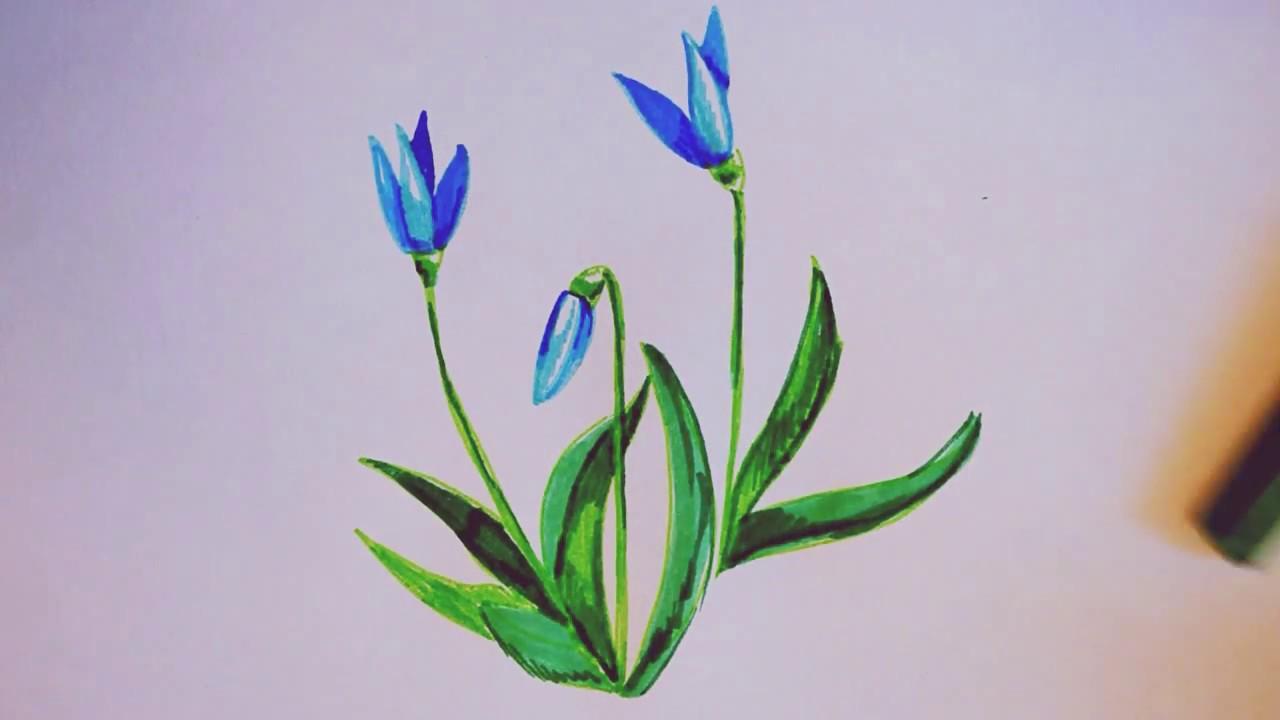 рисунки фото цветы