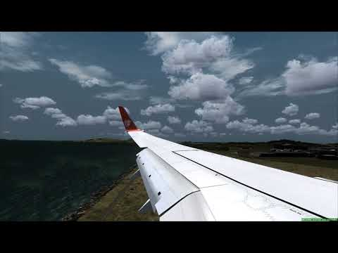 Thai Lion Air 737-900ER Landing At Seoul Airport ++ FSX