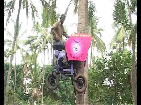 Coconut Tree Climbing Gear