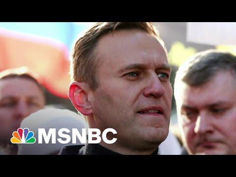 Russian Opposition Leader Navalny Goes On Hunger Strike   Morning Joe   MSNBC