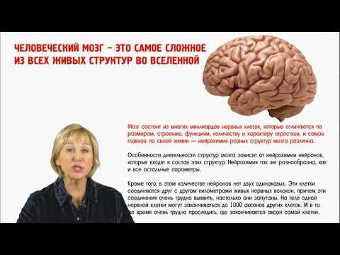 Вебинар «Как мозг управляет нами» (О.А. Бутакова)