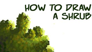 Art Tutorial- How to Draw a Shrub/Bush (For tablet users) (Test video 1)