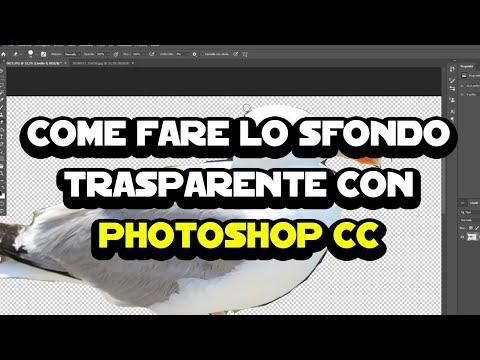 Come Fare Lo Sfondo Trasparente Con Photoshop CC