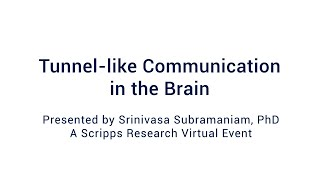 Tunnel-like Communication in the Brain: A Special Scripps Research Webinar 11/9/2020