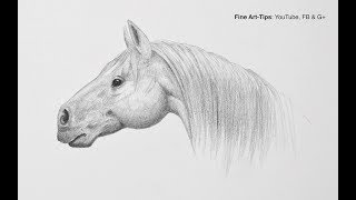 How to Draw a Horse Head Step by Step - Easy - Narrated