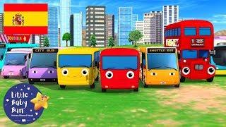 Canciones Infantiles   ¡Diferentes Tipos de Autobús!   Dibujos Animados   Little Baby Bum en Español