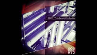 Baixar Pablo Santos - Only One Way - Sopik remix -  Gobsmacked Records