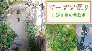 vol.34 【ガーデン便り】片道8歩の春散歩