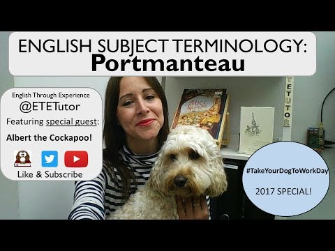 English Subject Terminology: What is a Portmanteau word?  Featuring Albert the Cockapoo!