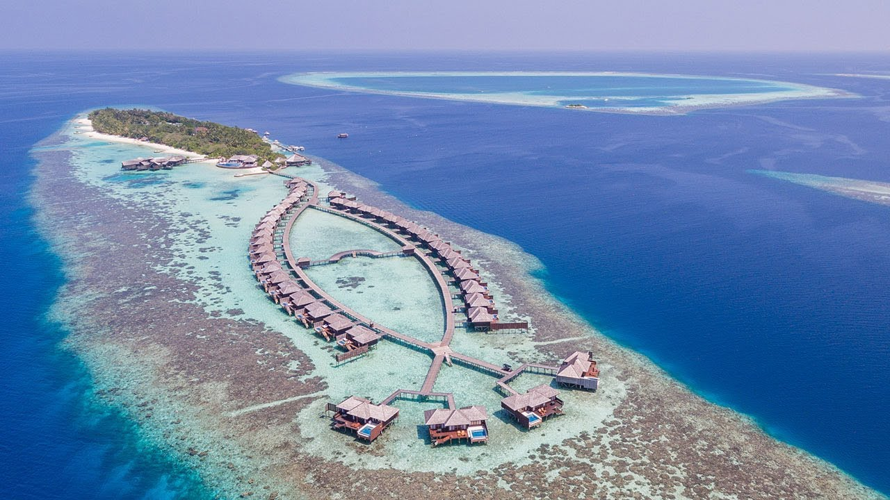 Discover Lily Beach Resort Maldives