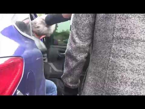 Policjanci rozbili grupę przestępczą, której członkowie podejrzani są o pranie pieniędzy