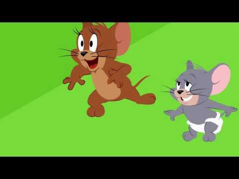 Tom e Jerry portugues brasil 2016 HD #24