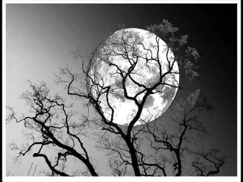 blue moon by mike and duke.wmv