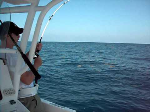 Galveston deep sea fishing avi youtube for Deep sea fishing galveston